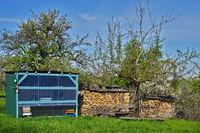 Bienenhaus und Brennholzstapel in einer Streuobstwiese