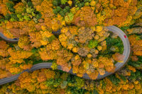 Having a trip in the autumn season, driving by car through the wonderful foliage. Top down shot by a drone.