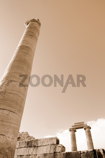 Säulen in Didyma sepia