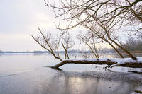 Landschaft mit Bäumen im Winter an einem See
