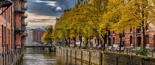 tree-lined canal and historic buildings in old warehouse district Speicherstadt in Hamburg
