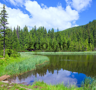 Summer mountain forest lake