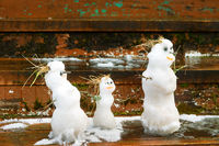 Spring history of the snowman family