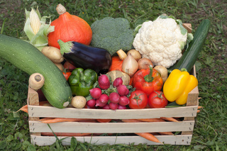 Frisches Gemüse in einer Holzkiste