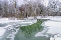 Spreewald im Winter - Spreeforest in cold winter