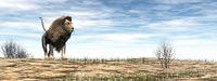 Lion standing in the desert - 3D render