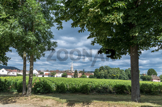 View over a vineyard in front of the village Pommard, France