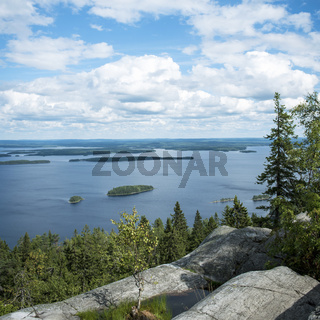 Koli Nationalpark in Finnland
