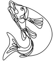 Lake Trout Jumping Up Continuous Line Drawing