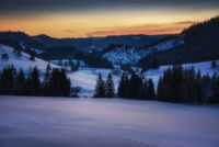 snowy landscape with trees and pine after sunset