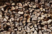 20211002_Brennholz, fire wood.jpg
