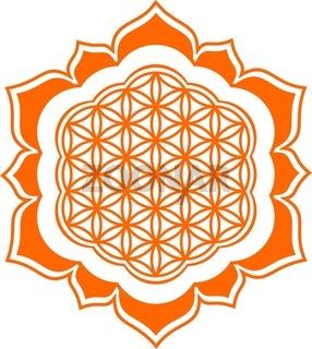 Blume des Lebens - Lotus Blüte