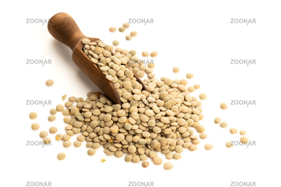 Lentil on wooden scoop isolated on white background. Lens culinaris