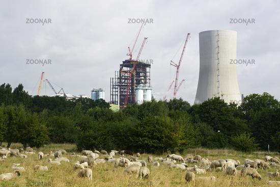 Trianel Kraftwerksbaustelle Lünen 2010, deutschland