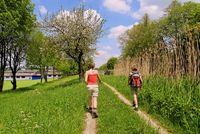 Wandern am Ludwig Kanal bei Berching