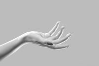 luxury female hand