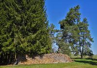 Brennholzstapel am Waldrand auf der Schwäbischen Alb