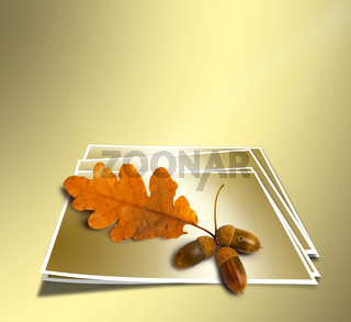 Autumn oak branch with acorns on abstract gold background. Concept.