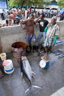 Fischmarkt von Male