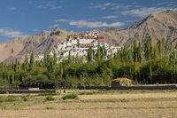 Thikse Gompa seen from a distance
