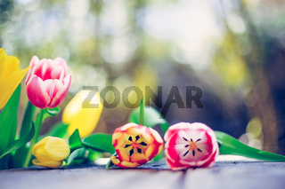 Arrangement of colorful spring flowers in the own garden blurry background with text space ideal for postcard