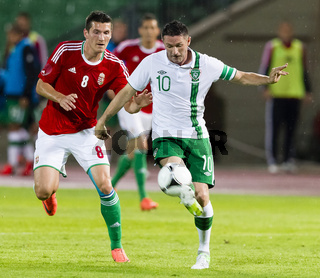 Hungary vs. Ireland international friendly football game
