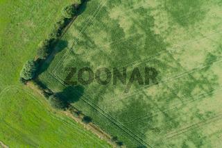 Drohnen Luftaufnahme von diversen Agrarfeldern