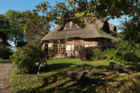 BARNSTORF ON DARSS, GERMANY - OCTOBER 06, 2021: The village is known for its picturesque colorful thatched roof houses with their country gardens.