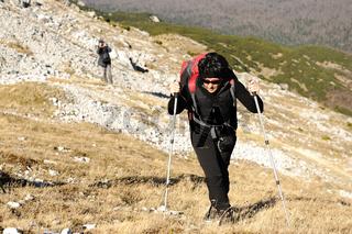 Mountain walker