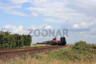 Züge begegnen sich auf dem Hindenburgdamm vor Sylt