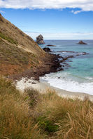 View of Sandfly Bay in the South Island of New Zealand