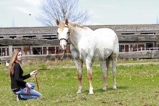 Weißes Westernpferd mit Besitzerin