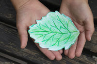 A green leaf drawn with colored pencils is neatly held in the hands of a small child.