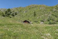 Landschaftsbild bei Bellwald Landscape near Bellwald