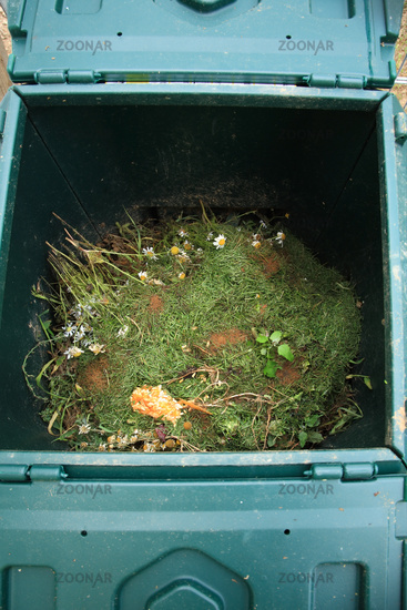 Open composter bin with rest of plants and vegetables for recycling