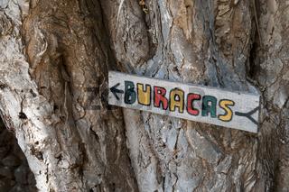 La Palma, Hinweisschild Buracacs, Drachenbäume