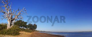 Panorama Landschaft im Chobe Nationalpark, Botswana; landscape at Chobe National Park, Botsuana
