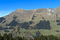 Berglandschaft der Waadtländer Alpen an der Waldgrenze bei Les Diablerets