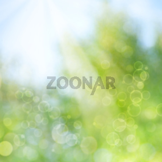 abstract spring and summer backgrounds with beautiful bokeh