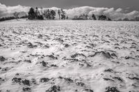 Feldlanschaft im Winter