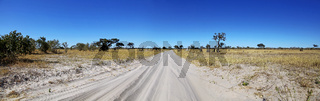 Sandpiste Chobe Nationalpark, Region Savuti, Chobe Nationalpark, Botswana; dirt road in Chobe National Park, Savuti