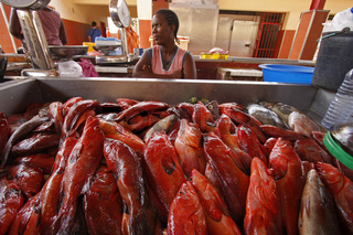 Verkaeuferin auf dem Fischmarkt von Mindelo