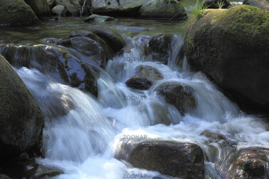 Gebirgsbach / Mountain stream
