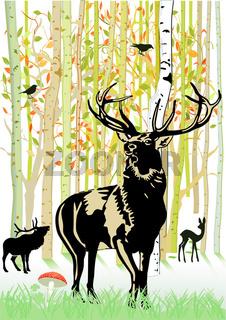 Wald mit Wild.eps