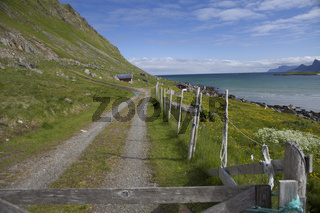 Weg am Meer, Krystad, Lofoten, Norwegen