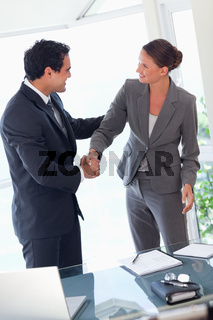 Business partner shaking hands after closing a deal
