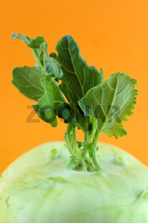 Cabbage kohlrabi