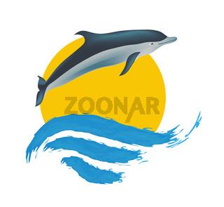 Dolphin vector illustration,