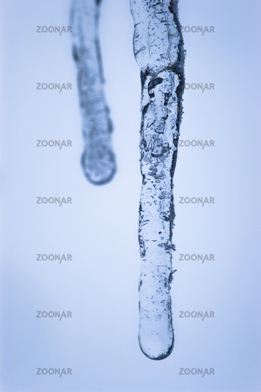 Macro close-up of 2 tiny icicles