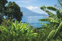 Tropical plants framing view to lake Atitlan and volcano peaks in Santa Cruz la Laguna, Guatemala